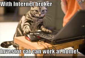 investorcat